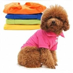 Рубашка цветная летняя стильная для собак и кошек