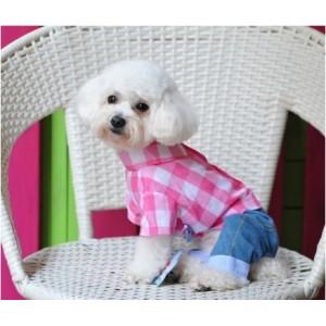 Костюм джинсовый стильный для собаки